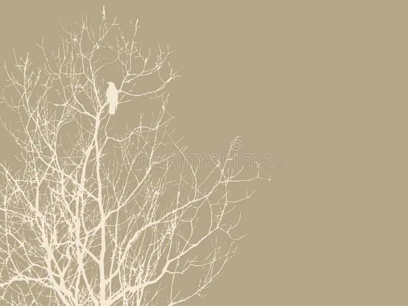 Download Crow on branch stock illustration. Image of antique, graphic - 23530038