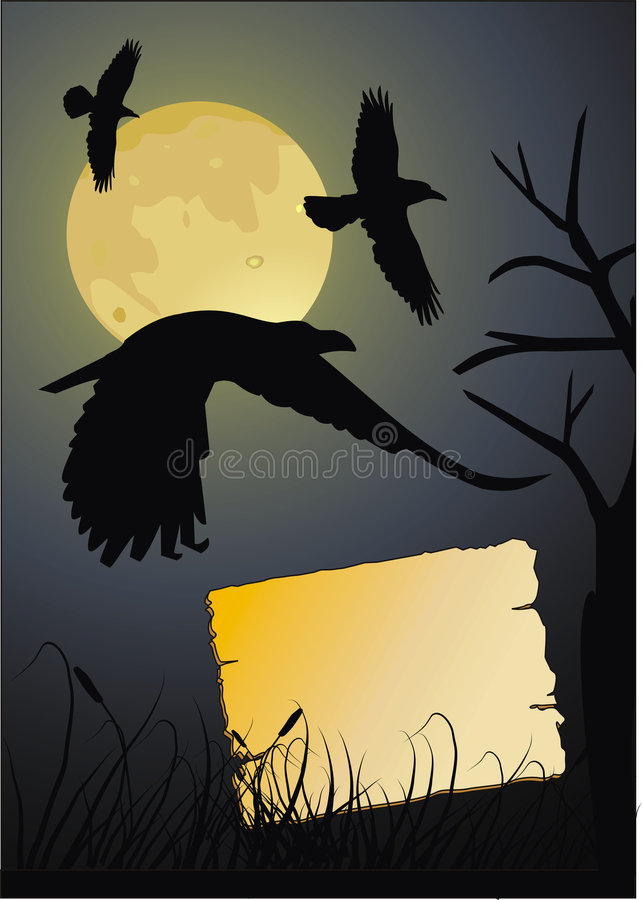 Download Crow in the dark night stock illustration. Image of traditional - 6579806