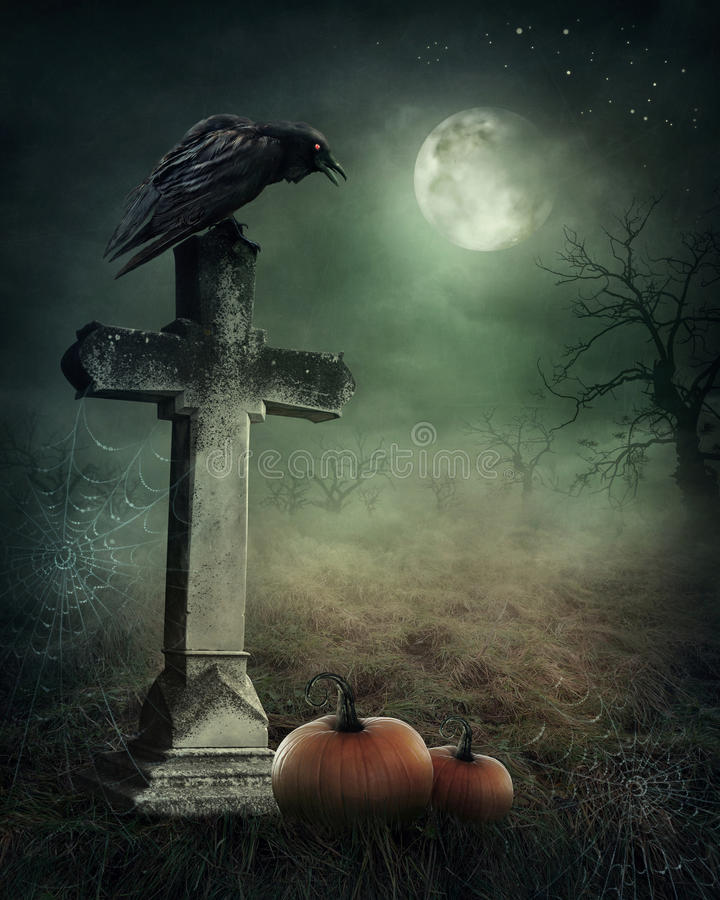 Crow on a grave. At night stock photos