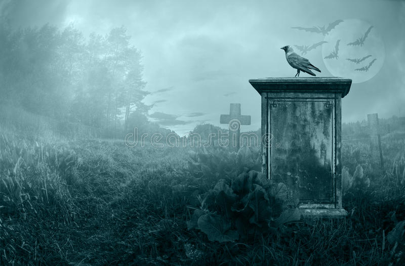 Crow on a gravestone stock image
