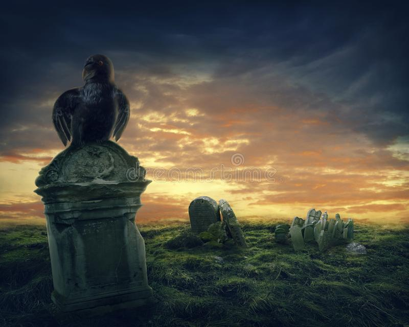Download Crow on a gravestone stock image. Image of horror, creepy - 105780047