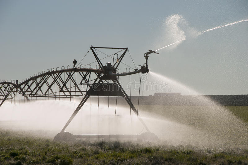 Download Crow Irrigation stock photo. Image of mobile, field, growing - 39501682