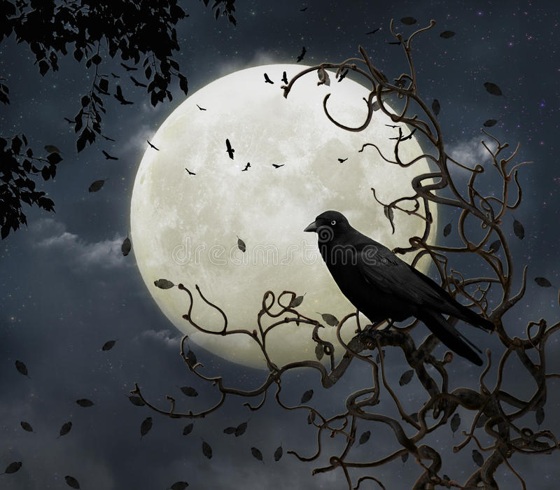 Download Crow and moon stock illustration. Image of crow, blue - 21408012