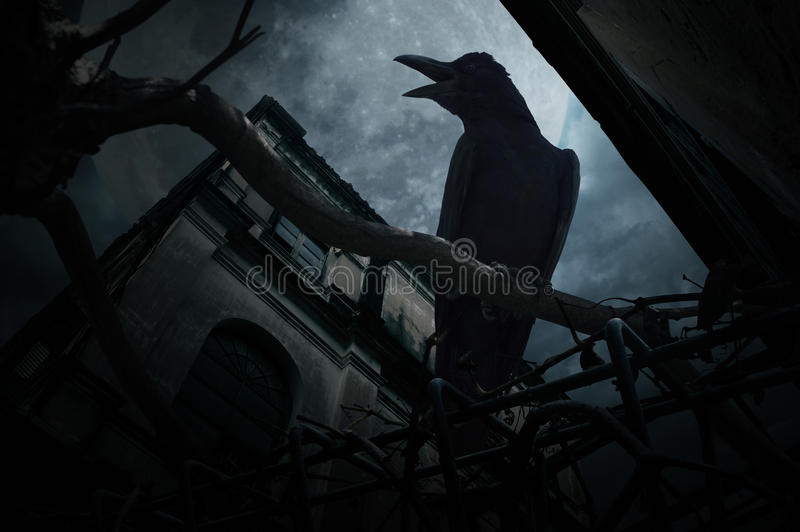 Crow sit on dead tree trunk and croak over fence, old grunge castle, moon and cloudy sky, Mysterious background, Halloween concept stock images
