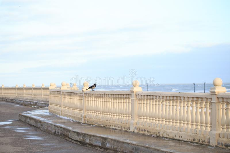 Crow sits on the balustrade against a cloudy sky royalty free stock photography
