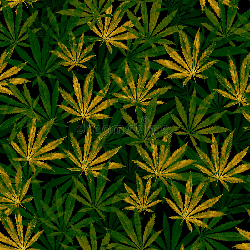Crowd of Cannabis leaves on black background vector illustration
