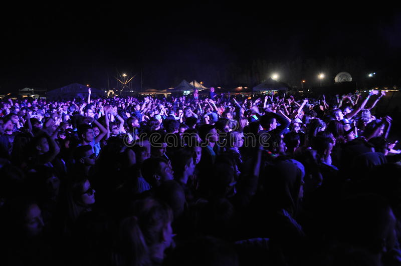 Crowd at Music Festival royalty free stock photos