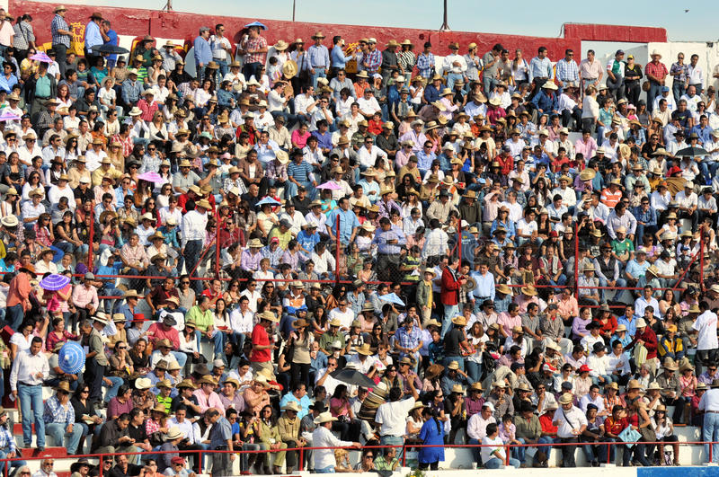 Download Crowd spectators editorial photography. Image of spectator - 23845962