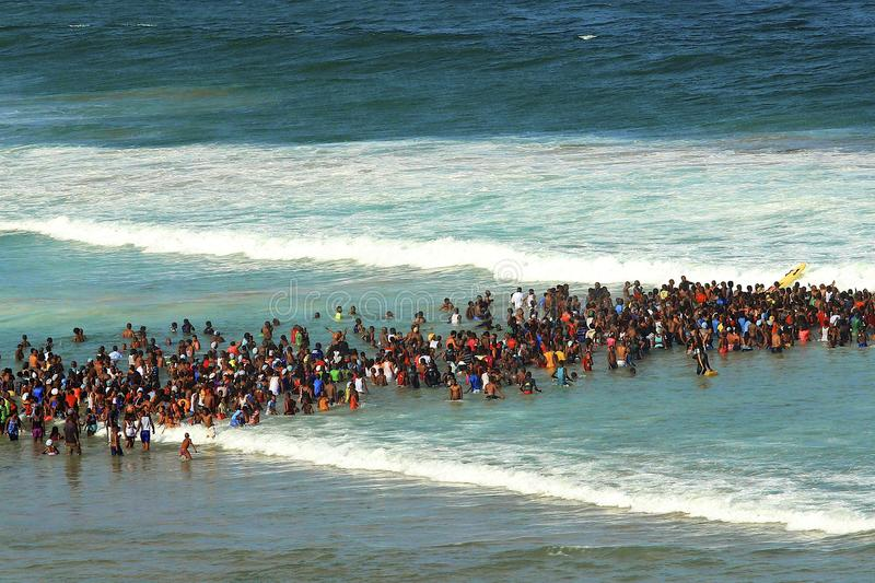 Crowd swimming in Durban. South Africa royalty free stock photography