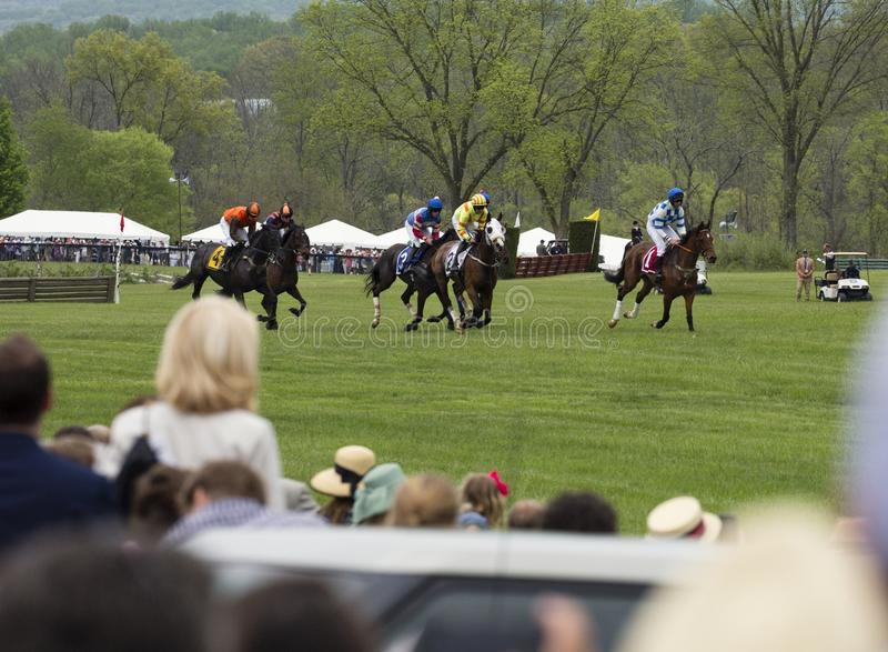 Crowd watches horses run The Virginia Gold Cup. The Plains, Virginia/USA-5-19-17: Crowd watches horses run in a race at The Virginia Gold Cup royalty free stock photography