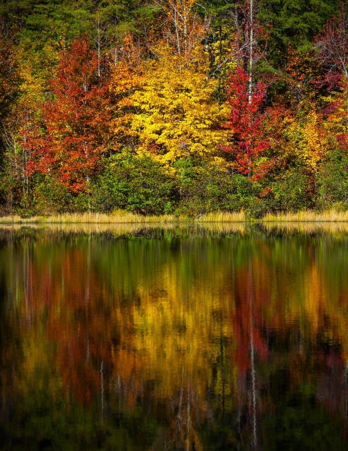 Crowders-Gebirgsnationalpark - North Carolina lizenzfreie stockbilder