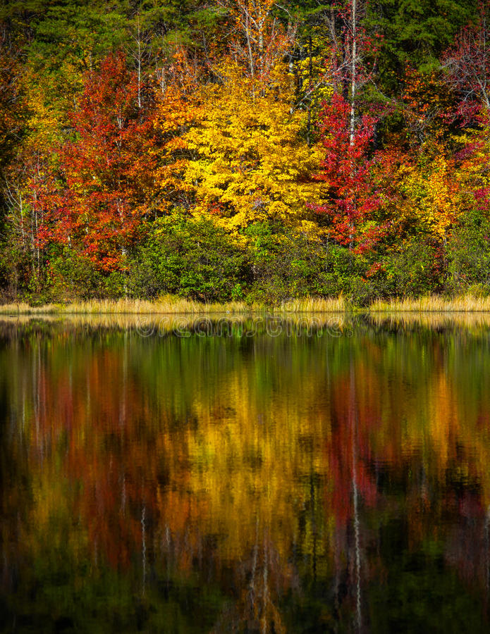 Crowders Mountain State Park - North Carolina royalty free stock images