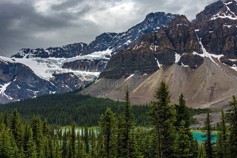 Crowfoot lodowiec w Icefields Parkway zdjęcie stock