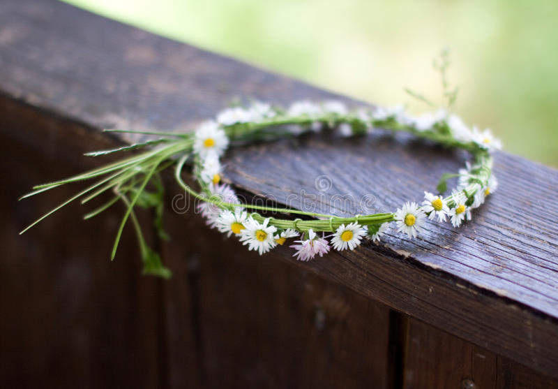 Crown of Daisies royalty free stock photo