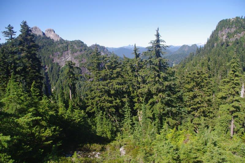 Download Crown Mountain stock image. Image of hike, britsh, pyramidal - 33676805