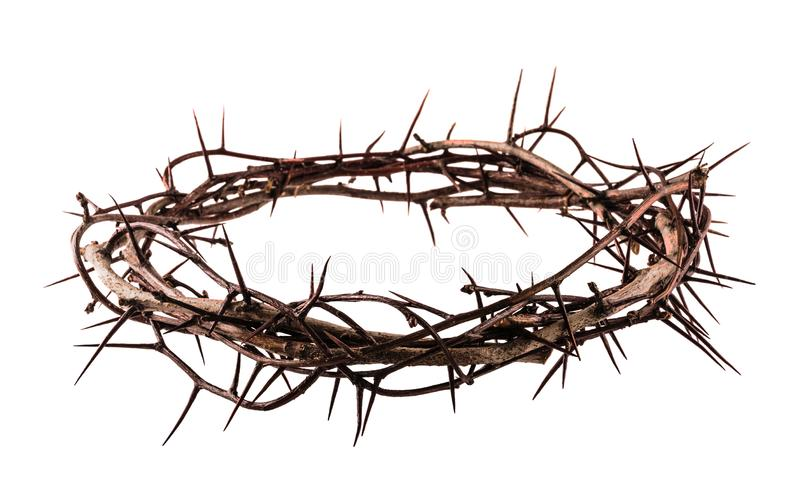 Crown of thorns. Jesus Christ isolaten on white stock image