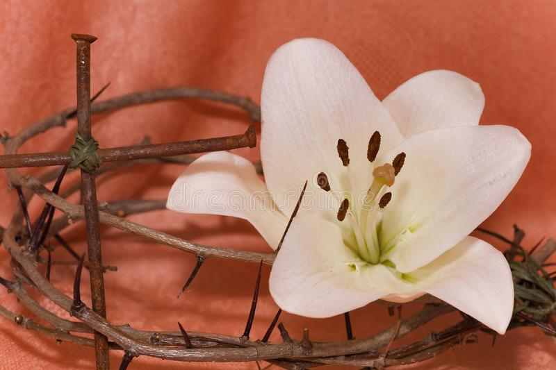 Crown of Thorns, crucifix and Easter Lily. Crown of Thorns, crucifix and Easter white Lily stock photos