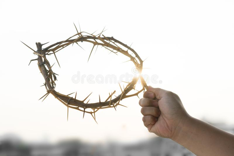 A crown of thorns stock photography