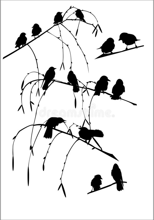 Crows royalty free illustration