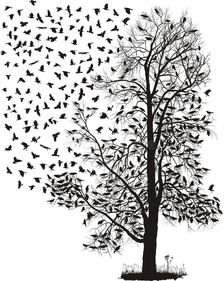 Download Crows Fly Away From The Tree Stock Vector - Image: 25806255