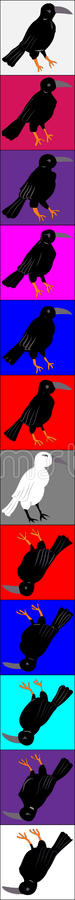 Crows and ravens, orderly organized in colored squares. Column. Crows and ravens, orderly organized in colored squares. In column royalty free illustration