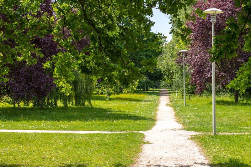 Cruces de rastros en el parque Verdes tempestuosos, porciones de arbustos y árboles verdes linternas que se colocan a lo largo de fotos de archivo