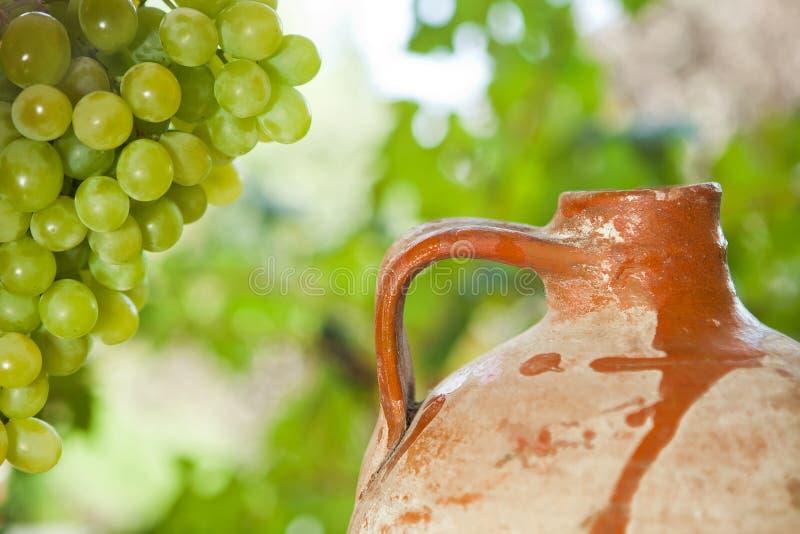 Cruche et raisins antiques de vin photographie stock libre de droits