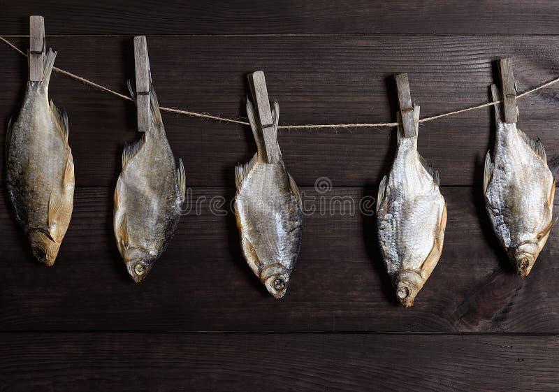 Crucian Hängen der gesalzten Fische an einem Seil gehakt auf einer hölzernen Wäscheklammer lizenzfreies stockbild