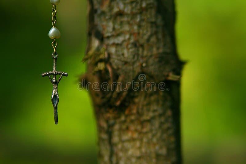 Crucifix ένωση σε ένα δέντρο στοκ εικόνες