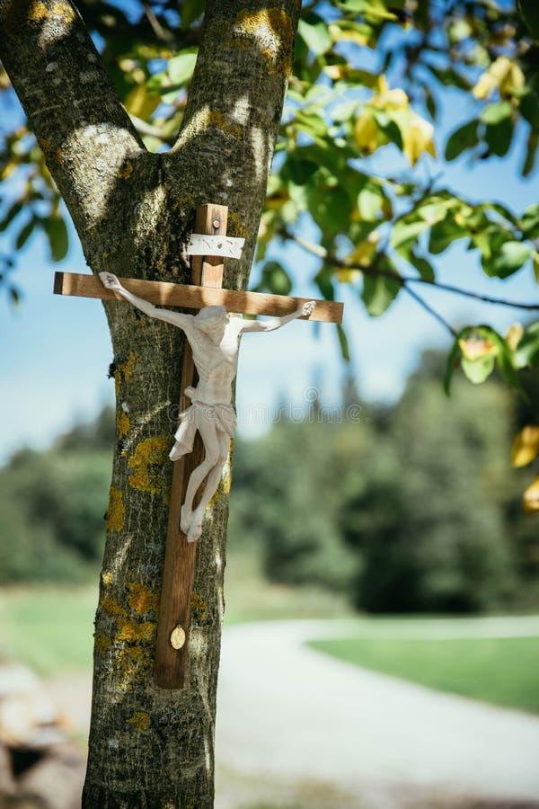 Crucifix σε ένα δέντρο, υπαίθρια, Ιησούς Χριστός στοκ φωτογραφία