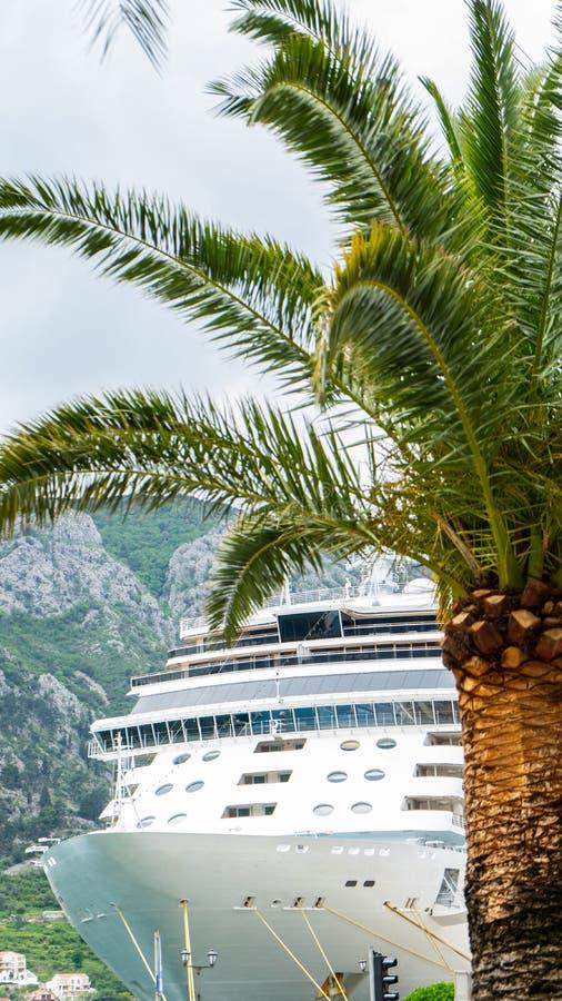 Cruise die aan de haven met een palm in de kant aankomen Toerist die aan een toeristische stad aankomen royalty-vrije stock fotografie