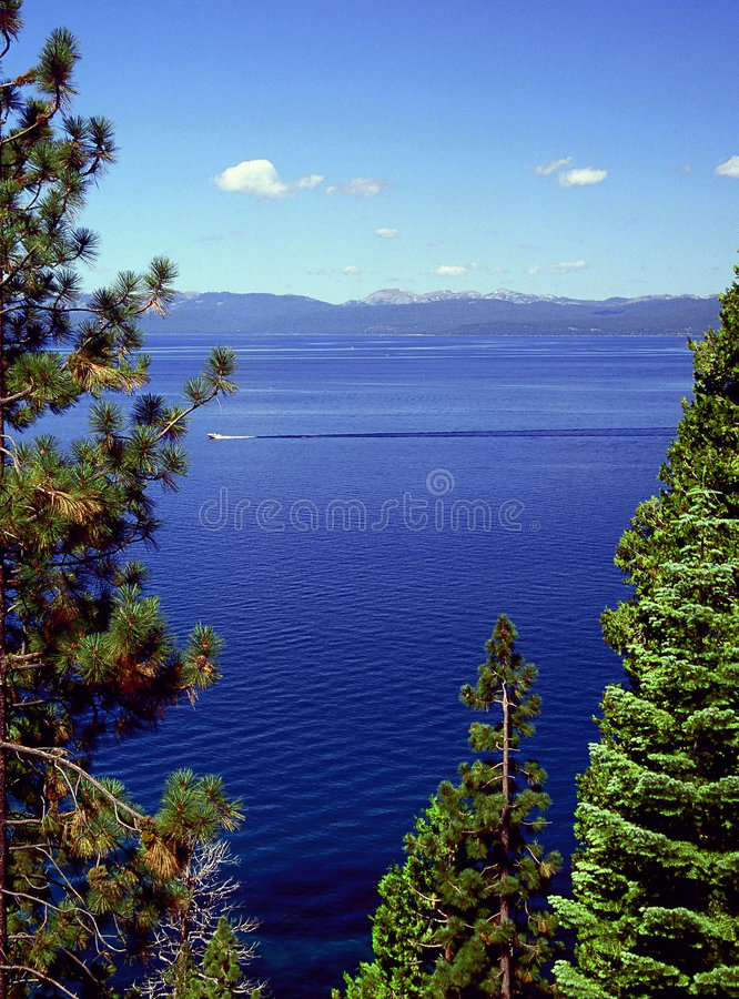 Cruising Lake Tahoe. Summer boat cruising Lake Tahoe with mountains in background and trees in foreground stock photos