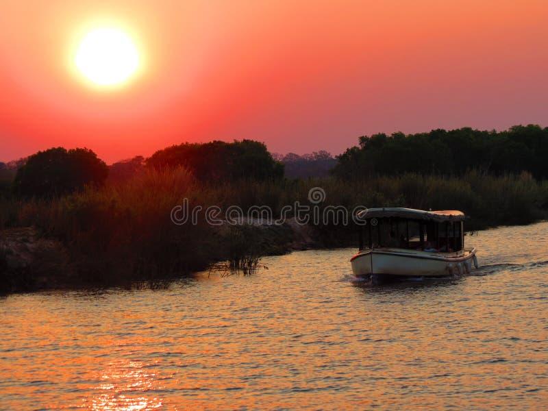 Cruize en el río Zambezi - Victoria Falls - Zambia y Zimbabwe fotos de archivo libres de regalías