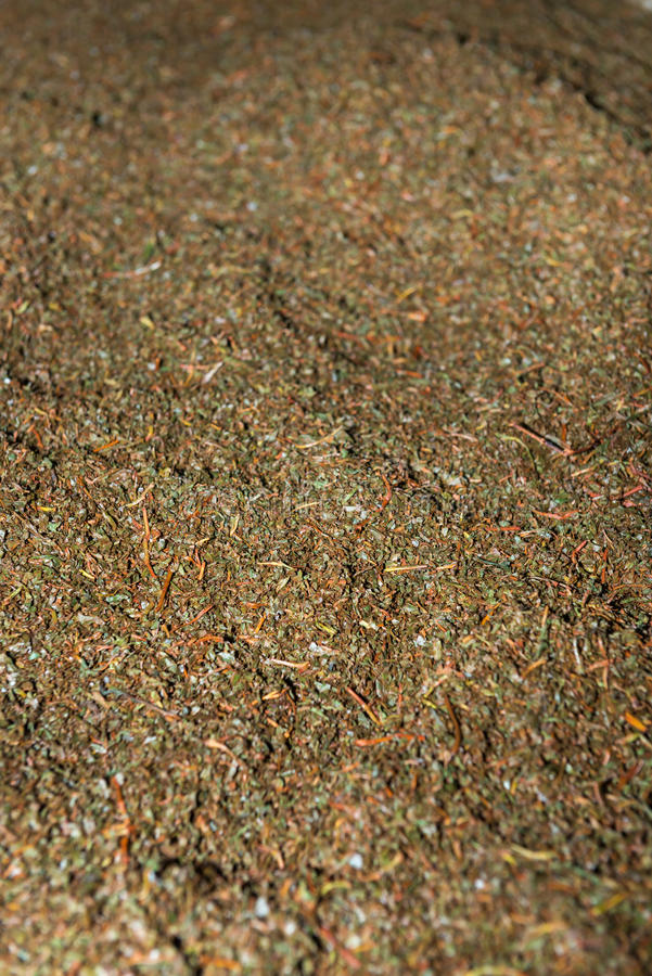 Crumbled up unsorted fresh green tea crop. On tea factory for fermentation stock photo