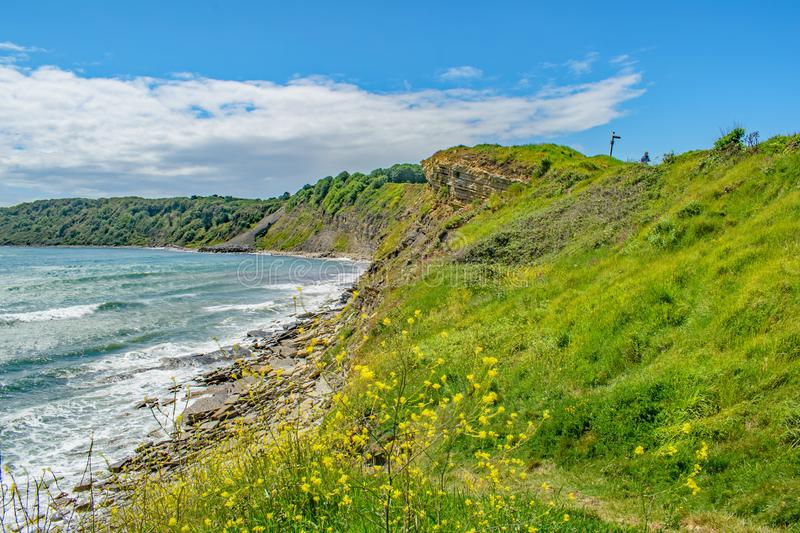 The crumbling rocky shore at Peveril Point, Swanage on a bright June day. Looking along the colourful hillsides stock images