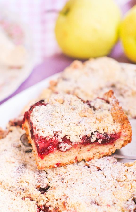 Crumbly pie with sweet plums royalty free stock photos