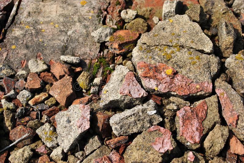 Crushed bricks with yellow moss, spring bright sun light, background texture detail stock photography