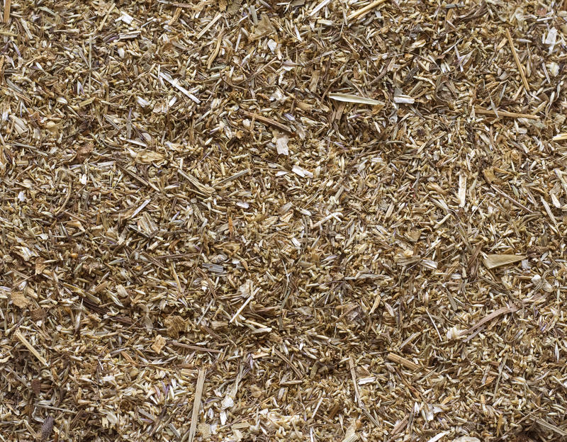 Download The Crushed Dried Up Curative Grass. Stock Image - Image: 13014875