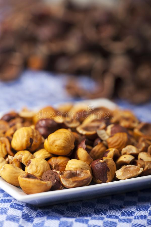Crushed hazelnuts. With nutshells on a dish towel stock image