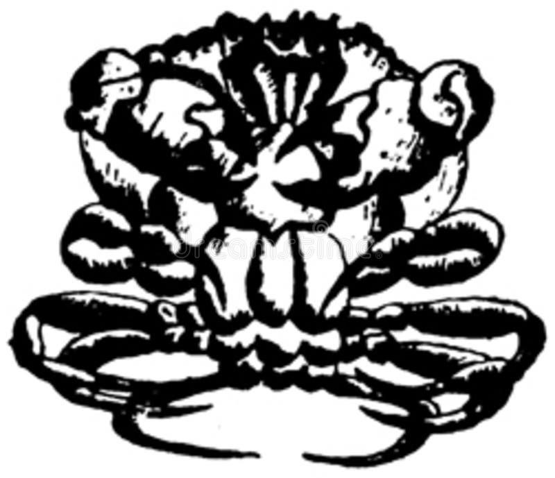 Crustace-006 Free Public Domain Cc0 Image