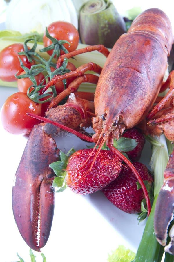 Crustacean стоковые фотографии rf