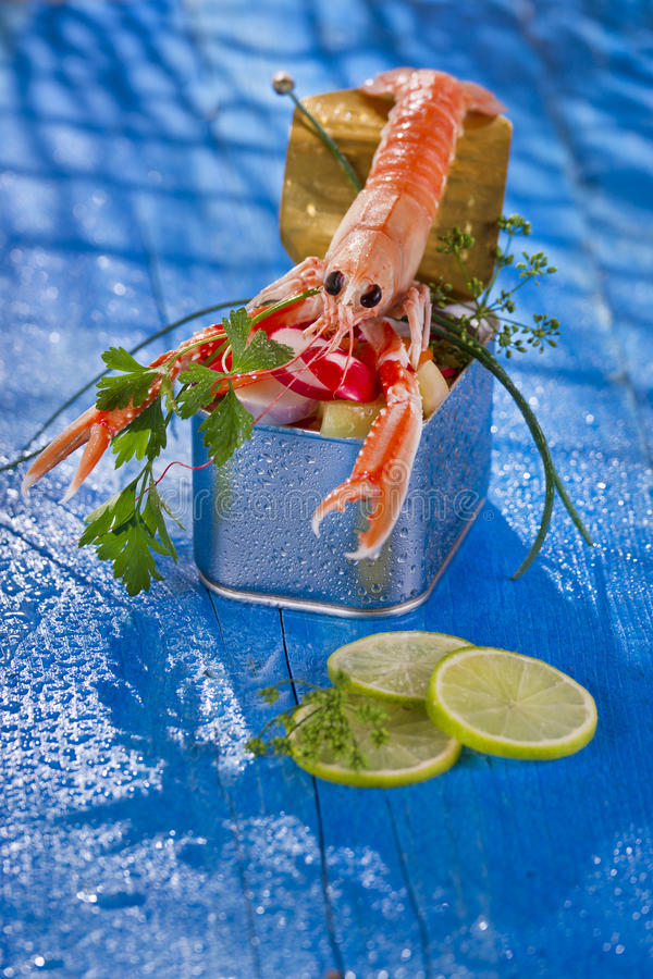 Crustacean canned. Presentation of a crustacean with mixed vegetables in box stock image