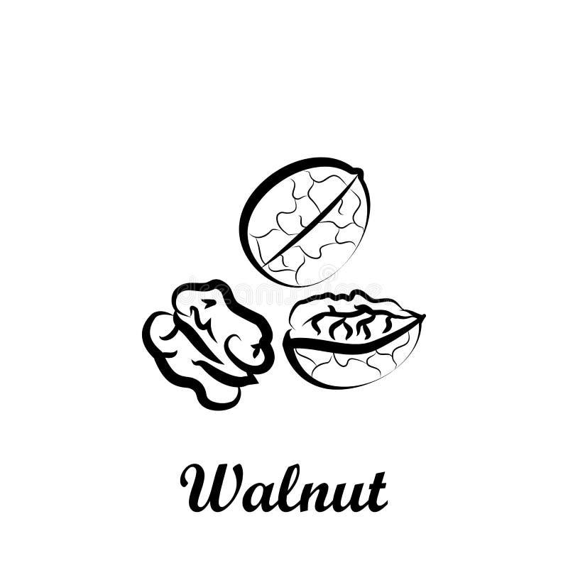 Crustaceans, плод, значок грецкого ореха Элемент значка Crustaceans Значок руки вычерченный для дизайна вебсайта и развития, разв иллюстрация штока