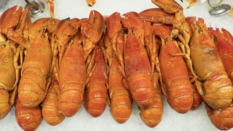 Crustaceans na lodzie, stos homary znać także jako Norwegia homar, Dublin Podpalana krewetka, langoustine lub scampi, w Bergen, N fotografia stock