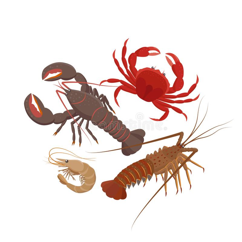 Free Crustaceans Set Of Vector Illustrations In Flat Design Isolated On White Background. Lobster, Spiny Lobster, Srimp, Rab. Royalty Free Stock Images - 155194069