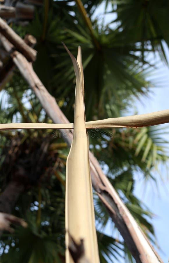 Cruz ajustada da folha de palmeira seca ao crucifixo em folhas de palmeira com fundo do céu foto de stock