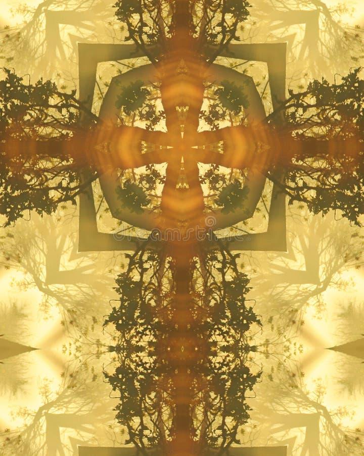 Cruz brumosa de los árboles de la mañana fotos de archivo