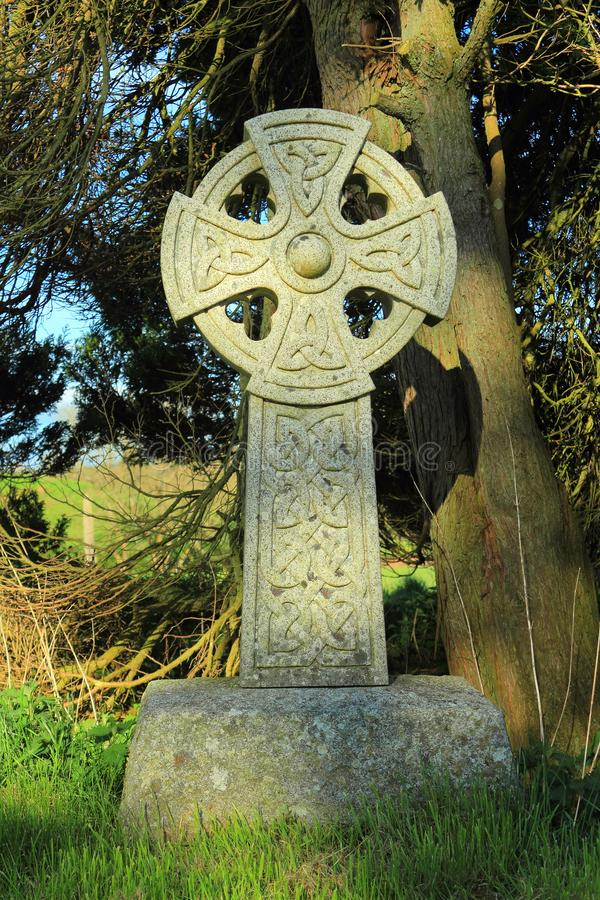 Cruz céltica debajo del árbol del tejo, de Dumfries y de Galloway viejos, Escocia foto de archivo libre de regalías