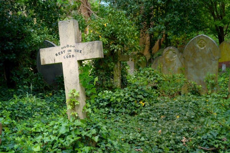 Cruz de piedra en un cementerio descuidado overgrown fotografía de archivo libre de regalías