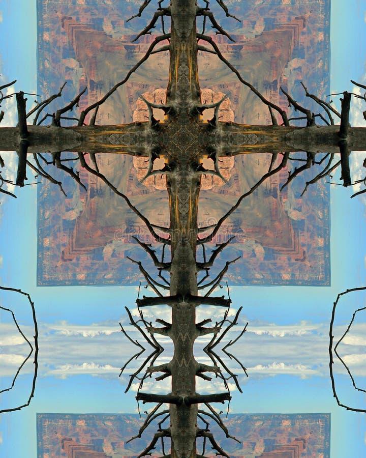 Cruz del árbol de la barranca magnífica imágenes de archivo libres de regalías